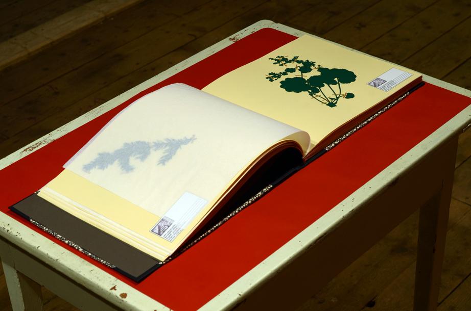 open_book_2.jpg