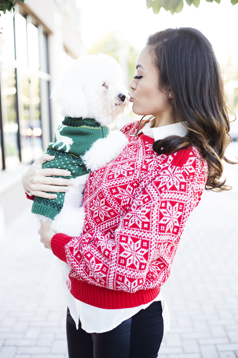 Cat christmas sweater etsy christmas sweater idea