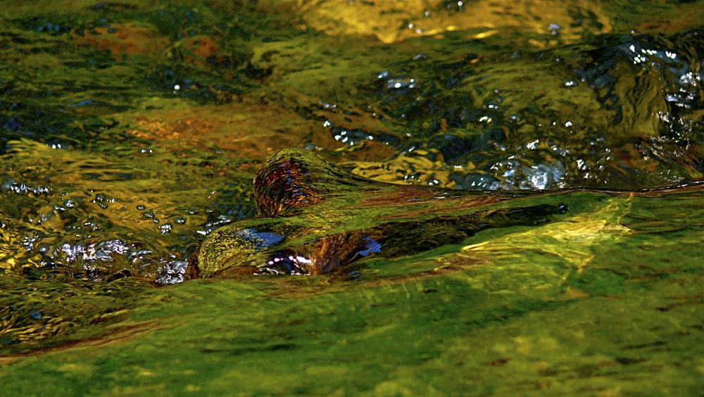 NE_Water_021.jpg