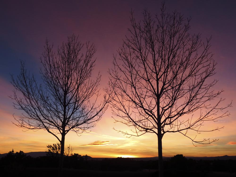 NE_SunsetSkyline_023.jpg