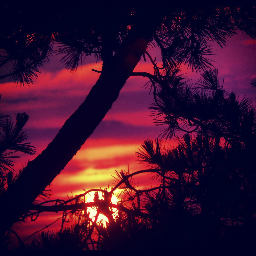 NE_SunsetSkyline_032.jpg