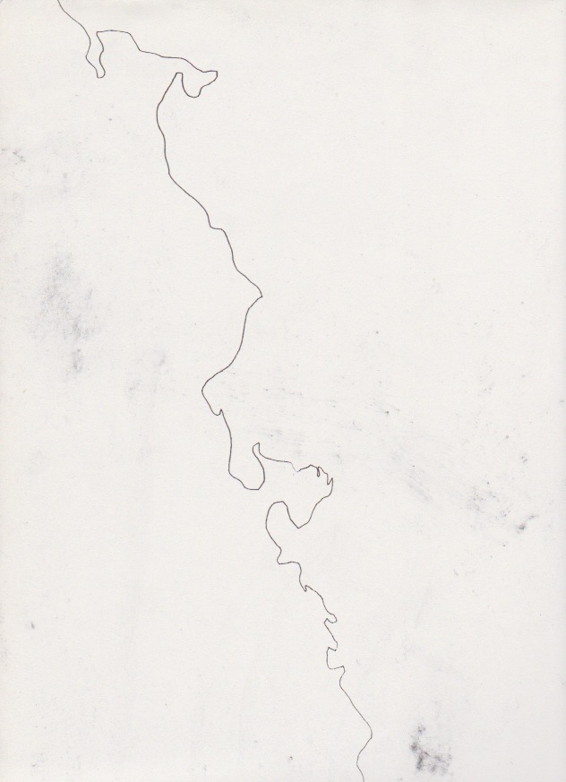 """CA"" – 18x32in, ink on paper"