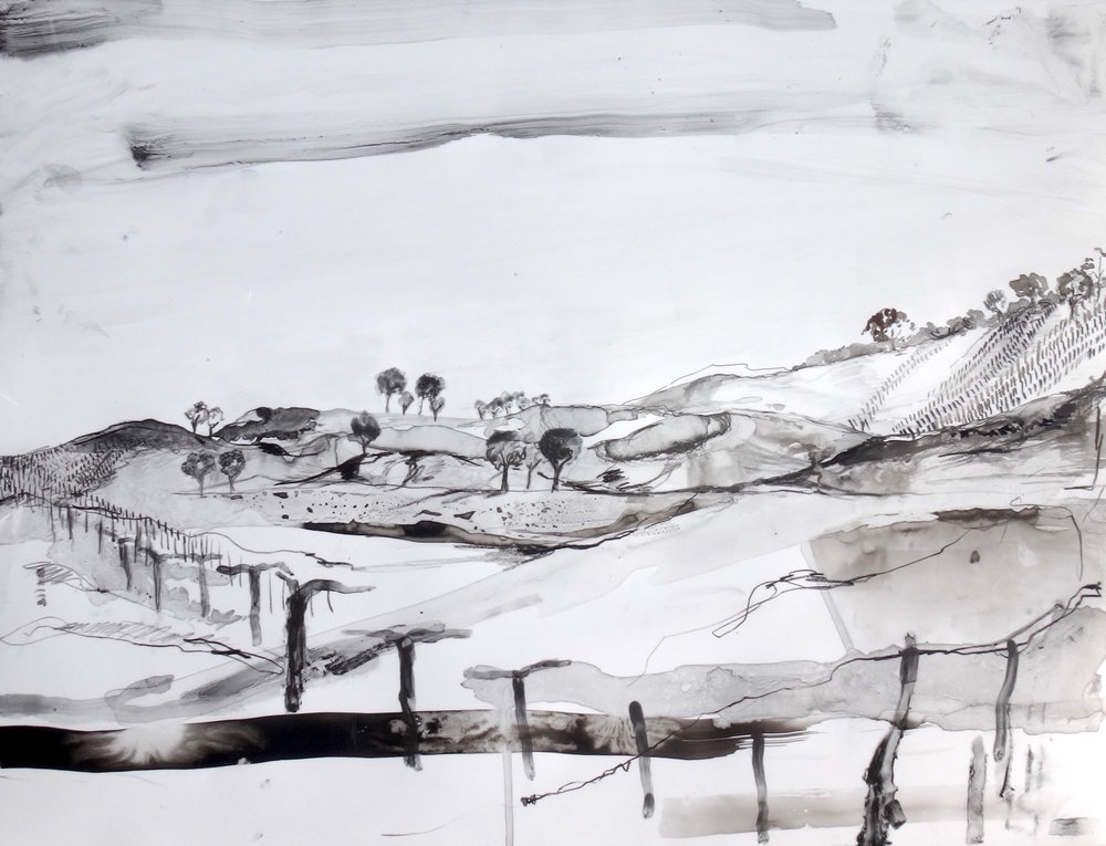South Burnett, Spring   Sumi, tusche and crayon on yupo  45.5 x 58.5cm
