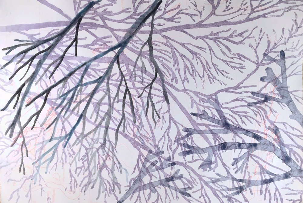 From the  Six Natural Wonders  suite (Detail)  lithograph (with thermo-chromic pigments) and indigo  28 x 41cm