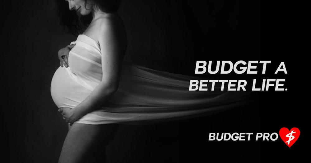 BudgetPro_AdBanner_2.jpg