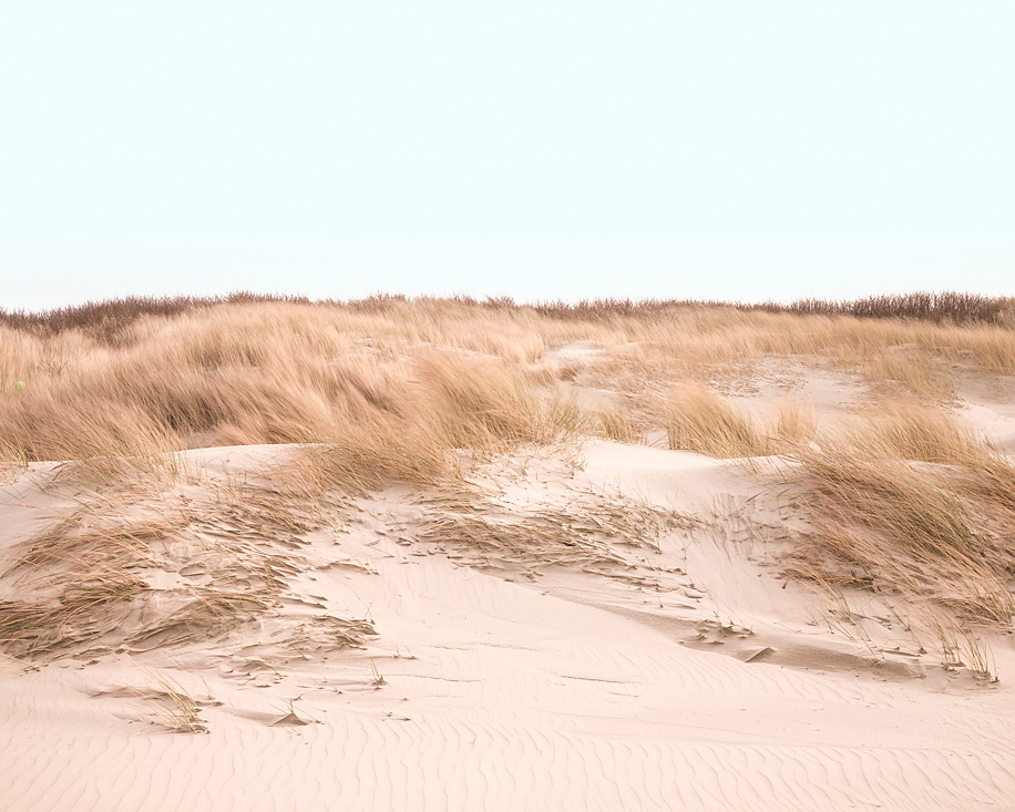 Dunes  (North Sea, 2014)