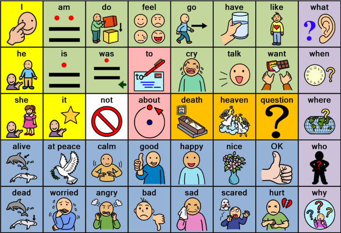 augmentative communication systems sign languages pecs essay The ultimate aac resource page this may involve pointing to or exchanging pictures, using sign language using the picture exchange communication system for children with autism how can aac help with behavior problems.