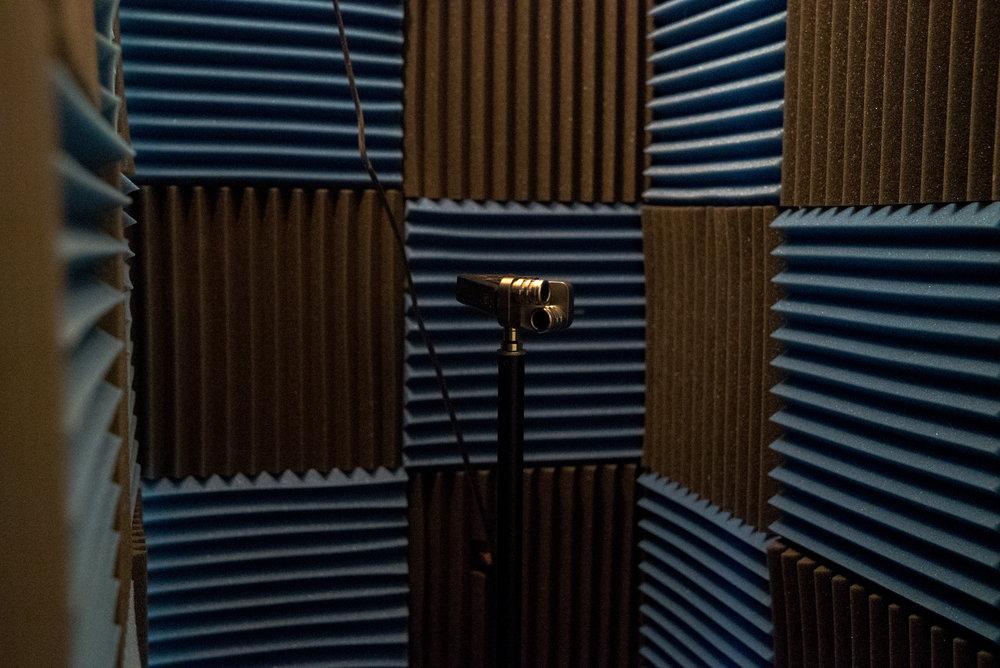 mic on (1 of 1).jpg