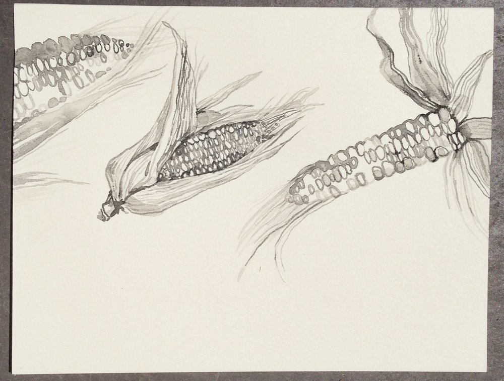 """""""Corn"""" card"""