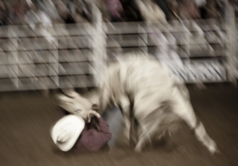 Rodeo Motion-0739.jpg