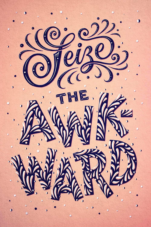 seizetheawkward-poster.jpg