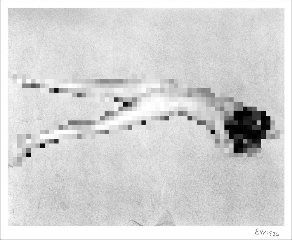 Nude_5_Dune_Template_1936.jpg