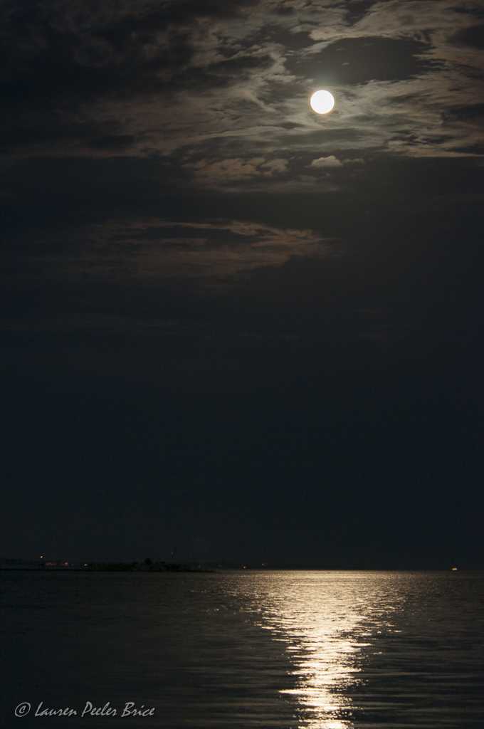 Moonrise Over Fort Sumter, Charleston Harbor (c) Lauren Peeler Brice