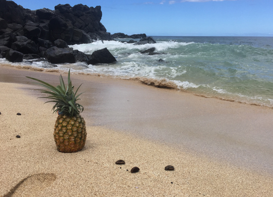 Pineapple-on-the-Beach-1-.jpg