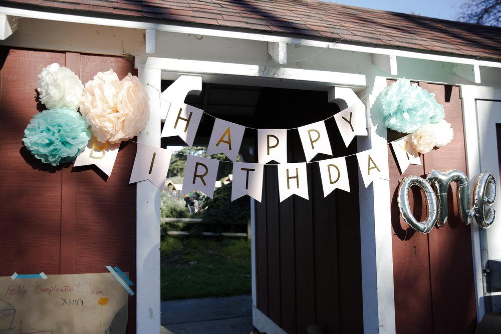 ellieneave1stbirthday-ahp-00003.jpg