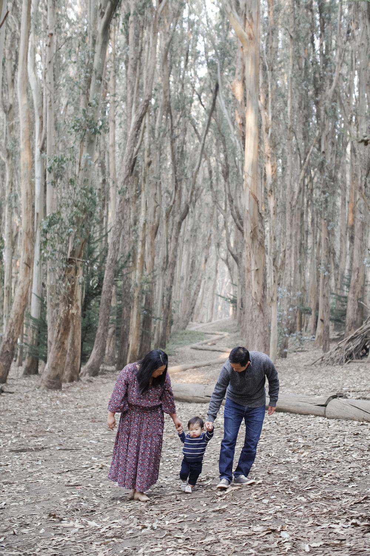 wongfamily-ahp-00061.jpg