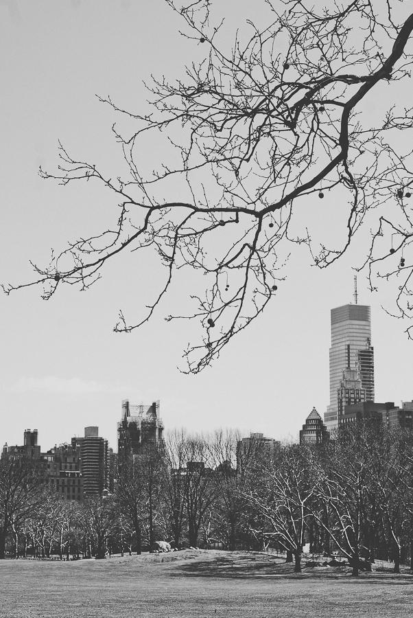 NYC 3-26-14-12.jpg