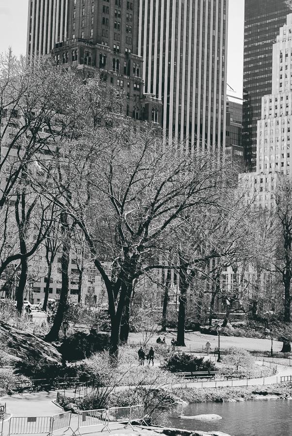NYC 3-26-14-41.jpg