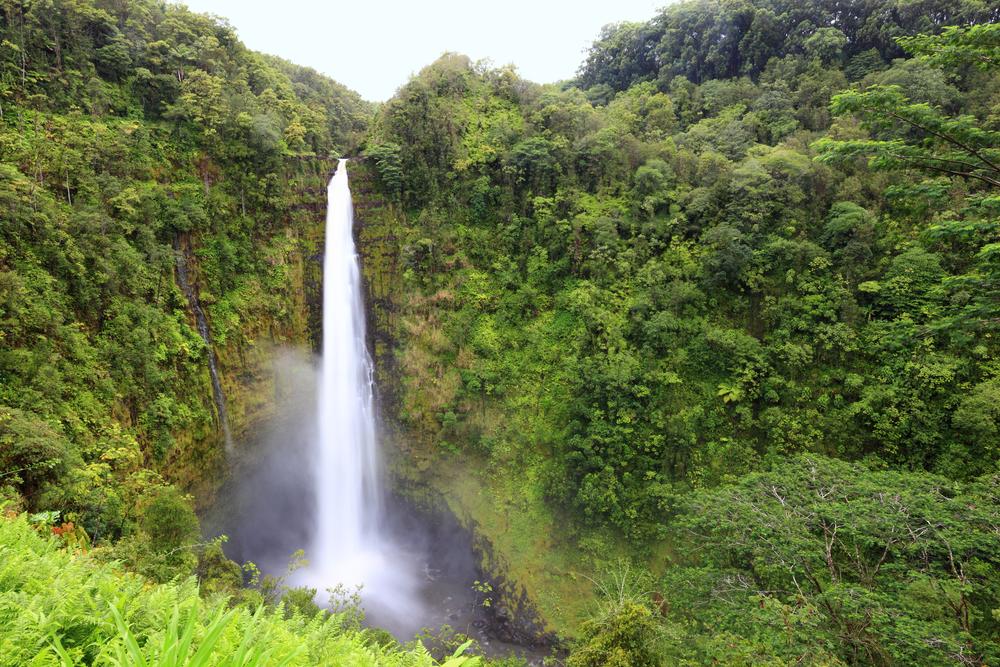akaka falls 5.jpg