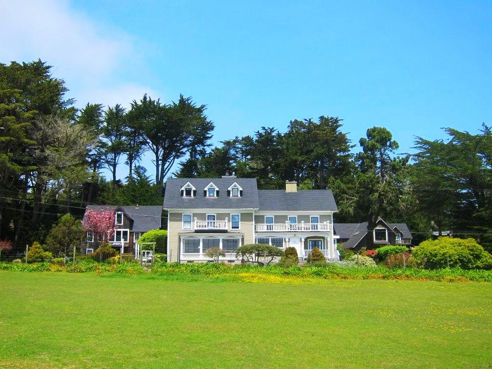the entire estate, a llama-eye view