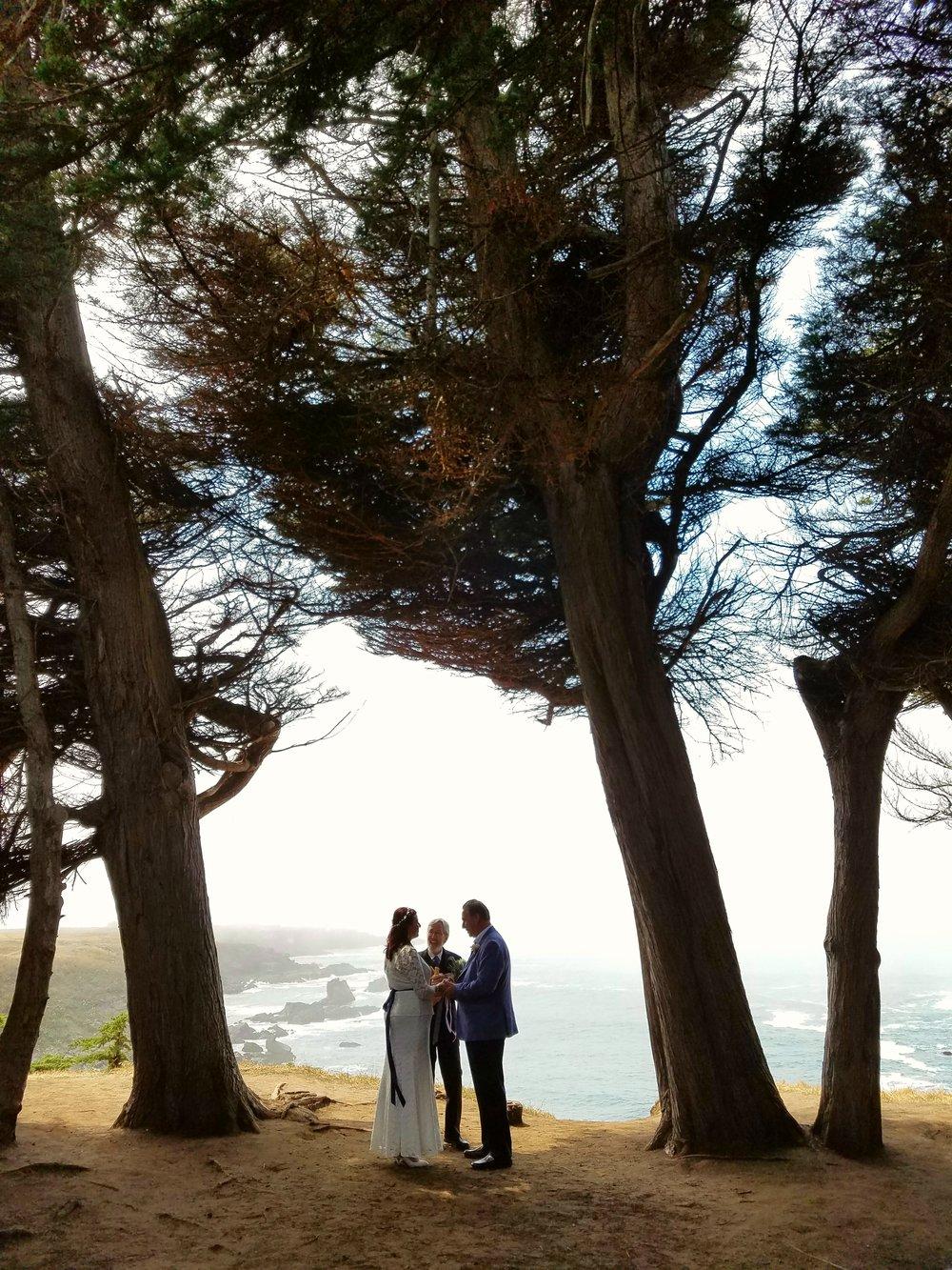 elopement Cypress grove silhouette.jpg