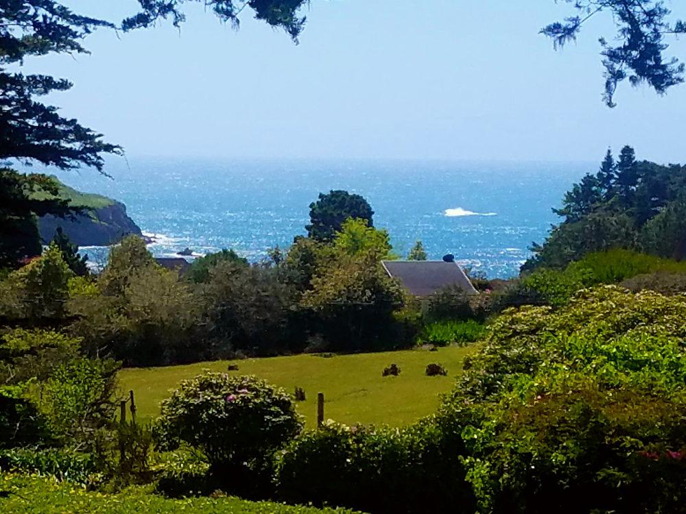 Briar Rose View.jpg