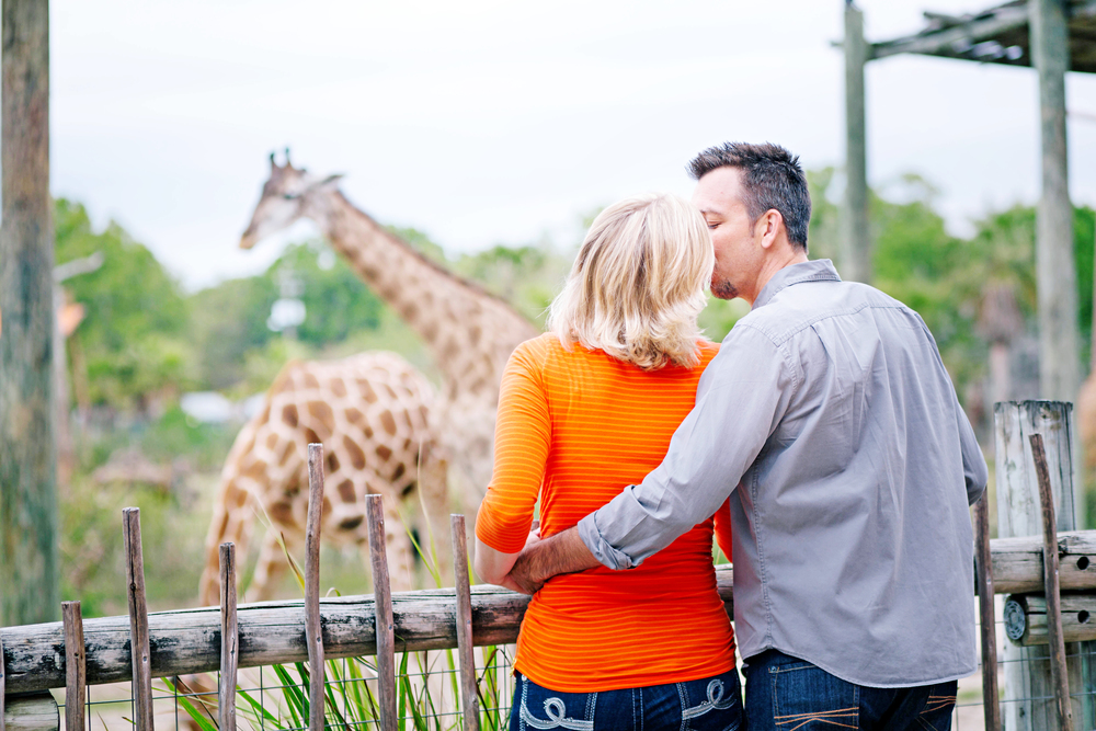 Bryner Engagement Shoot Tampa Lowry Park Zoo-139482.jpg