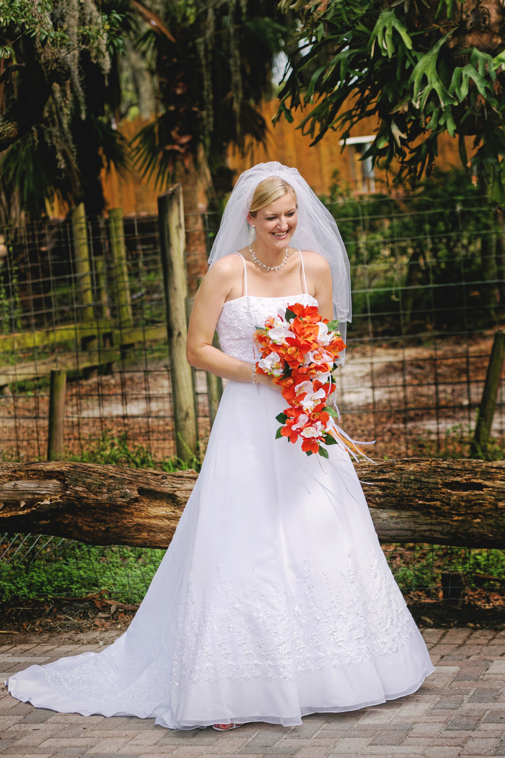 Tampa Lowry Zoo Wedding Photographer-68.jpg