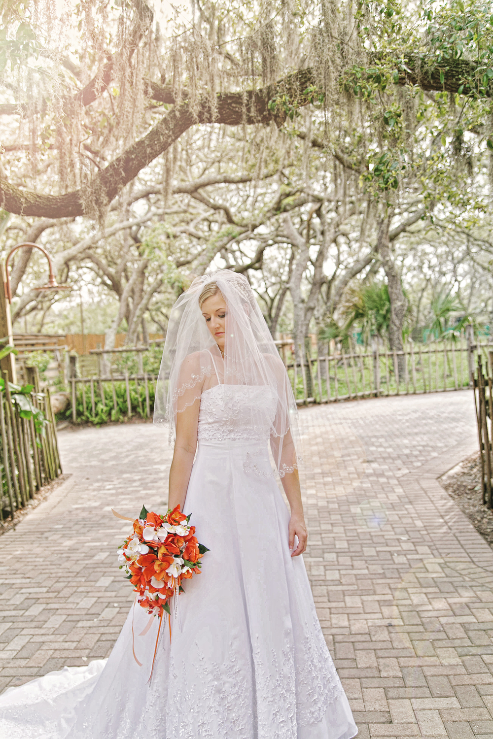 Tampa Lowry Zoo Wedding Photographer-82.jpg