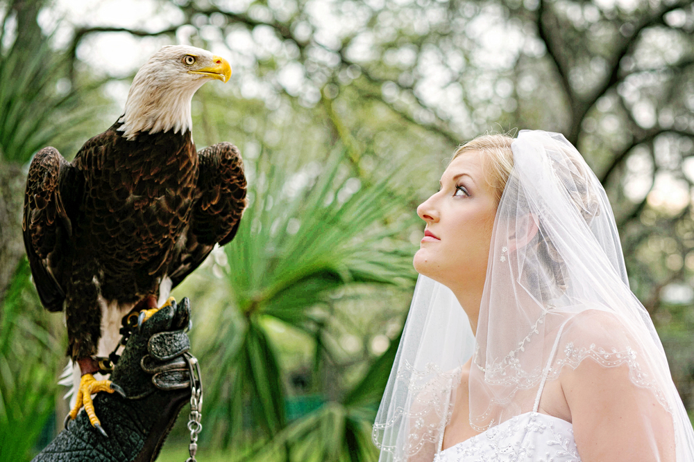 Tampa Lowry Zoo Wedding Photographer-271.jpg