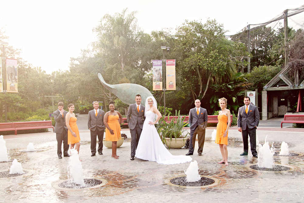 Tampa Lowry Zoo Wedding Photographer-294.jpg