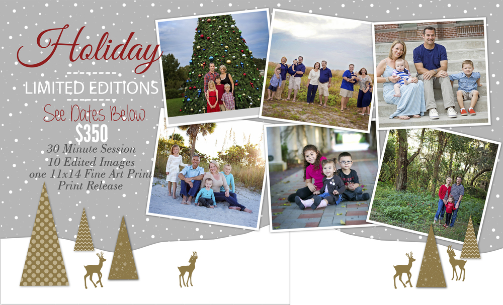 Tampa Family Holiday Mini sessions Photographer Christmas
