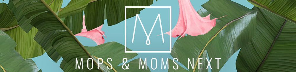 Register here:  MOPS (mom's pregnant through preschool aged) ;   MomsNext (mom's of school aged kids)
