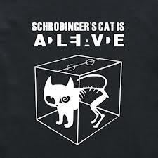 …Curiosity killed the cat?