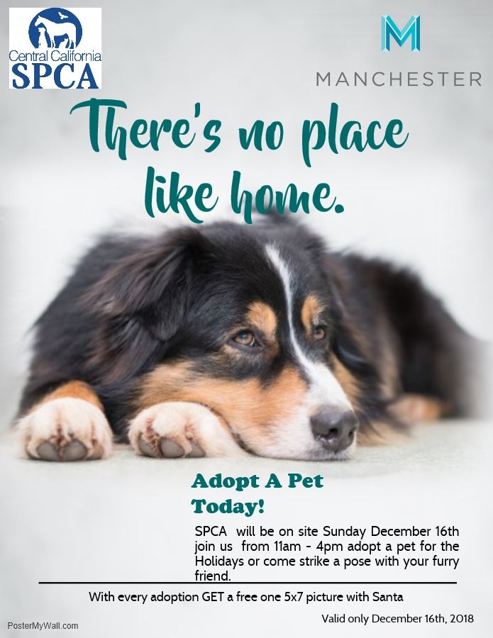 SPCA FLYER1.png