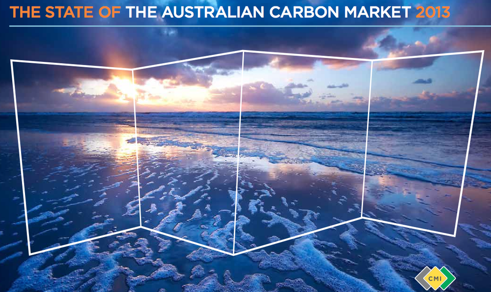 State of the market report by Carbon Market Institute