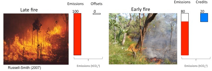 Figure showing how savanna carbon credits are generated