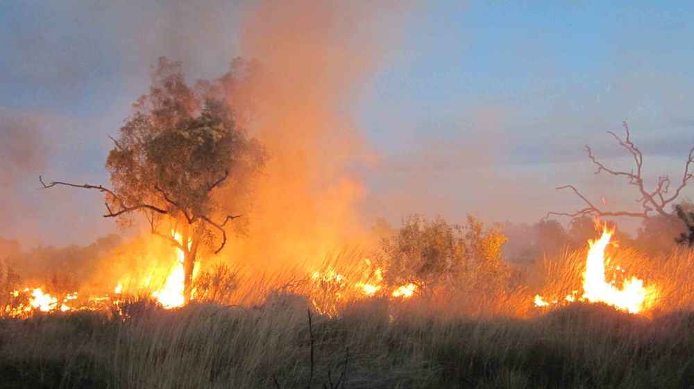 Is there a native title right to burn country?