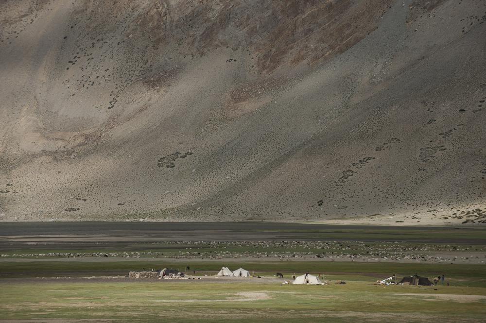 Nomad camp  Ladakh, India