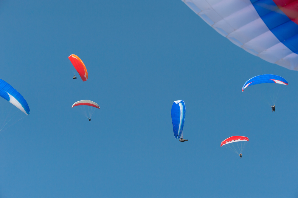 Paragliders _DSC6874.jpg