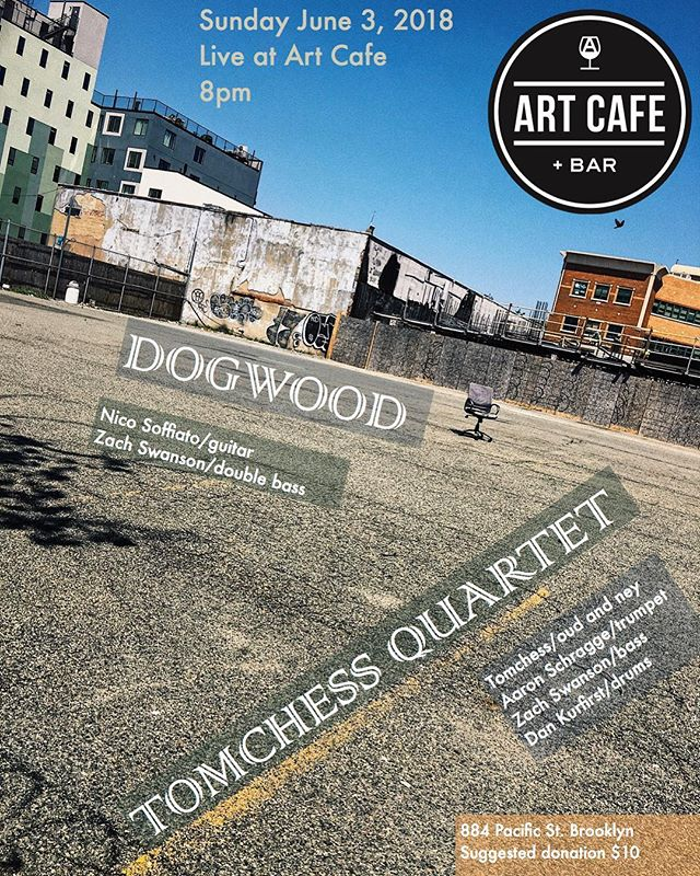 This Sunday! #dogwoodduo #livemusic #brooklyn