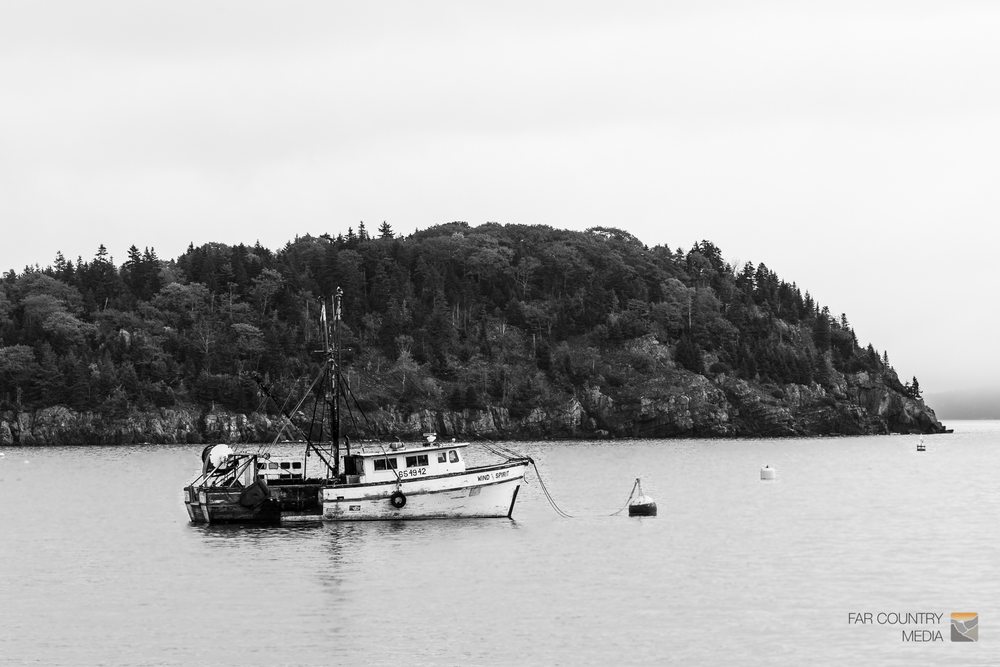 Acadia-0081.jpg