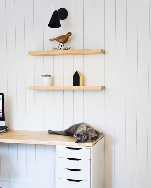 Yes, Henry is winking at you. 😉 . So I need to wipe the dust off my keyboard and do new blog post soon. Since I never have the patience to sit down and write out DIY instructions while @jarrodallen works I'm almost afraid to ask this. . We used pre-primed shiplap for our office wall - do y'all need a step by step tutorial or a simple review of the material? Or maybe neither and you are interested in other topics. Whatever it is - I wanna hear from you! . . . #everygirlathome #livesimple#clickinmoms #minimallife #mydomaine #apartmenttherapy #inmydomaine #realsimple #designsponge #rshome #homeiswheretheheartis #buildersofig #theeverygirlathome #sodomino