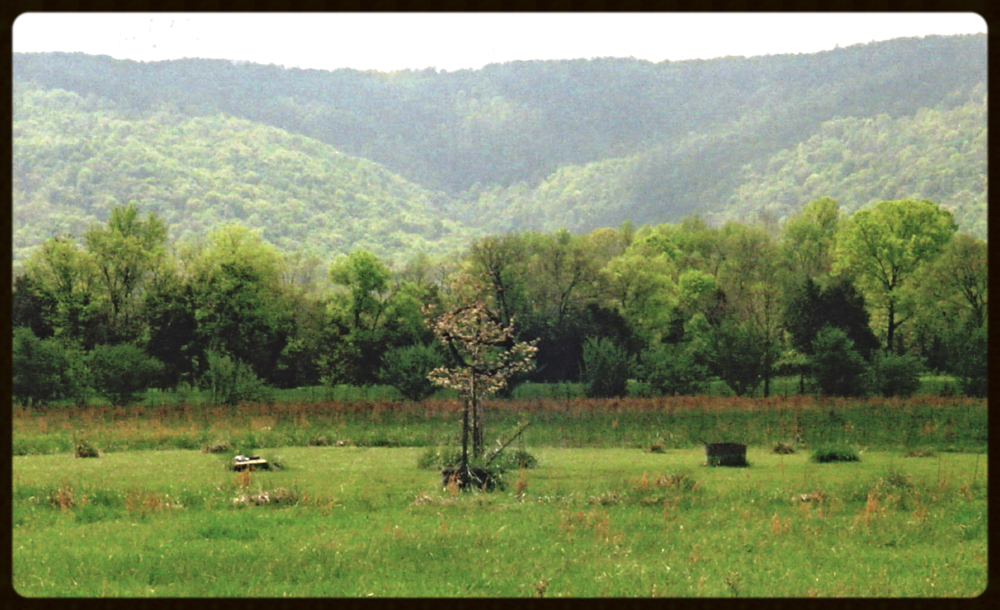 The Ceremonial Grounds at Stephen's home in the Cumberland Plateau of Tennessee