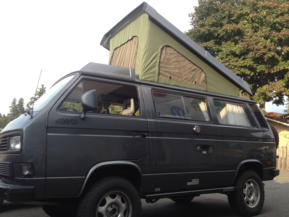 Custom North Westy Canvas. Fern body with Gold windows