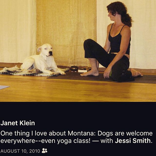 ⠀ #fbf to an FB post from a woman who was visiting my last yoga studio in MT. ⠀ ⠀ The studio was a short walk from our house ⠀ & out of necessity ⠀  I would often bring our rescue pup, Micky, to morning classes before taking him up Pete's Hill for his real walk. ⠀ ⠀ Needless to say, there are so many stories of Micky's presence in the studio ⠀ (and anyone from those days who has stories to share, ⠀  I would love to hear them) ⠀ ⠀ Today this second Friday the 13th of the year ⠀  just 3 months ago ⠀  also marks the day that my husband & I had to let our beloved boy go to the Rainbow Bridge. ⠀ ⠀ •⠀•⠀•⠀•⠀•⠀•⠀•⠀•⠀•⠀•⠀•⠀•⠀•⠀•⠀ ⠀ ⠀  Now I've taught yoga for close to 20yrs ⠀ and have certainly moved through many challenges myself ⠀ as well as facilitating that for others along the way. ⠀ However, this loss ⠀ the loss of my greatest guru ⠀ has shined a light of awareness that I can no longer ignore:⠀ I must take care of myself. ⠀ ⠀  I write all this as I sit with my tea ⠀ the sun rising for a new day ⠀ & get ready to go teach my last yoga class. ⠀ ⠀ ⠀ It's another ending. ⠀ Another death of sorts. ⠀ ⠀ The only difference is that I'm excited about this one because it's really just another layer of this grand experience that is life. ⠀ ⠀ I am forever grateful to all the teachers I've had ⠀  the many friends I've made ⠀ and all the students who have also taught me so much. ⠀ ⠀ I wish I could tag you all in this post - but I actually have to get going for this last class! ⠀ ⠀ Namaste ⠀ ✌🏼❤️ ⠀ #dharma #letgo #moveon #move #forward #yoga #grateful #namaste ⠀ ⠀