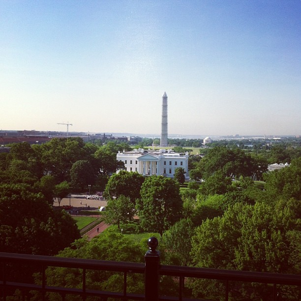Capitol junk