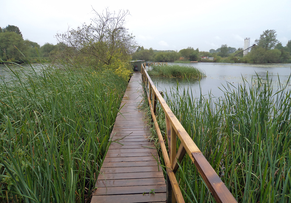 A walk through the reeds to the excellent 'huts'