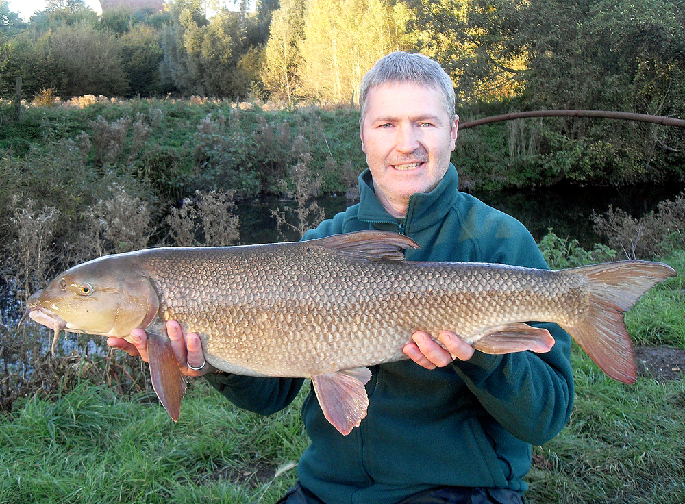 Now that's a beauty, even if I say so myself! 14lb+ of hard fighting Lea barbel
