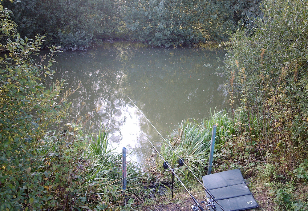 A tight little swim, but all those overhanging bushes held plenty of carp